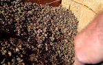 Утепление керамзитом стен и пола каркасного дома